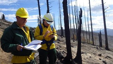 Get To The Core Of ABL With USFS Corp