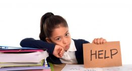 The Need for Homework Help Online Services