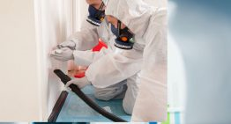 Understanding more about asbestos Do-it-yourself testing kit