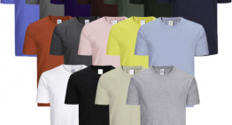 Why Are Wholesale T-Shirts Business Online Popular in the U.S.?